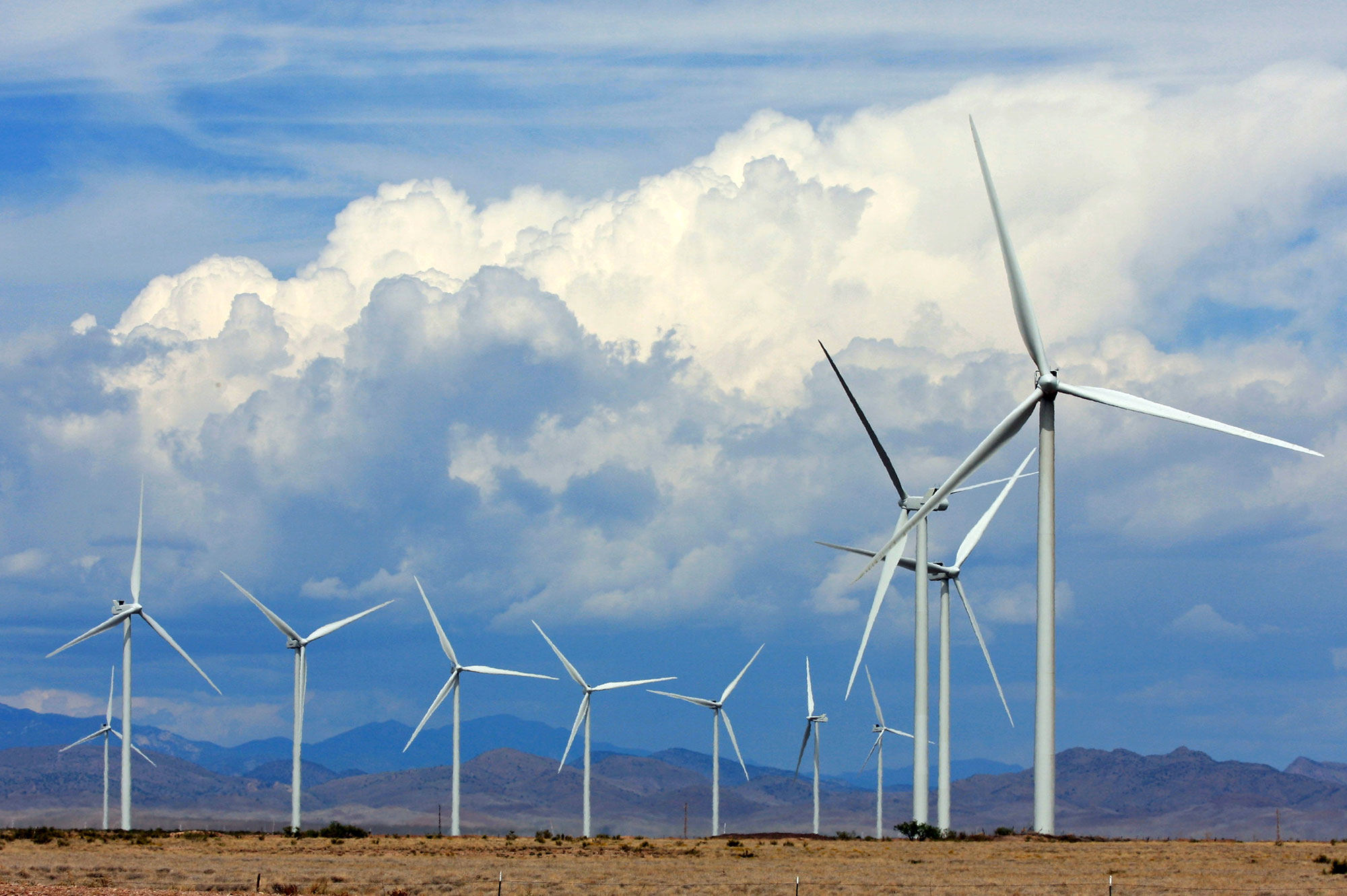 Macho Springs Wind Farm, near Nutt, NM.